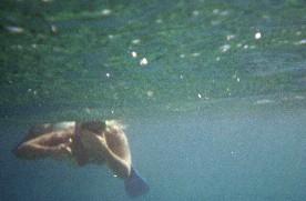 http://mapage.noos.fr/alasource/images/avrilsousmer.jpg