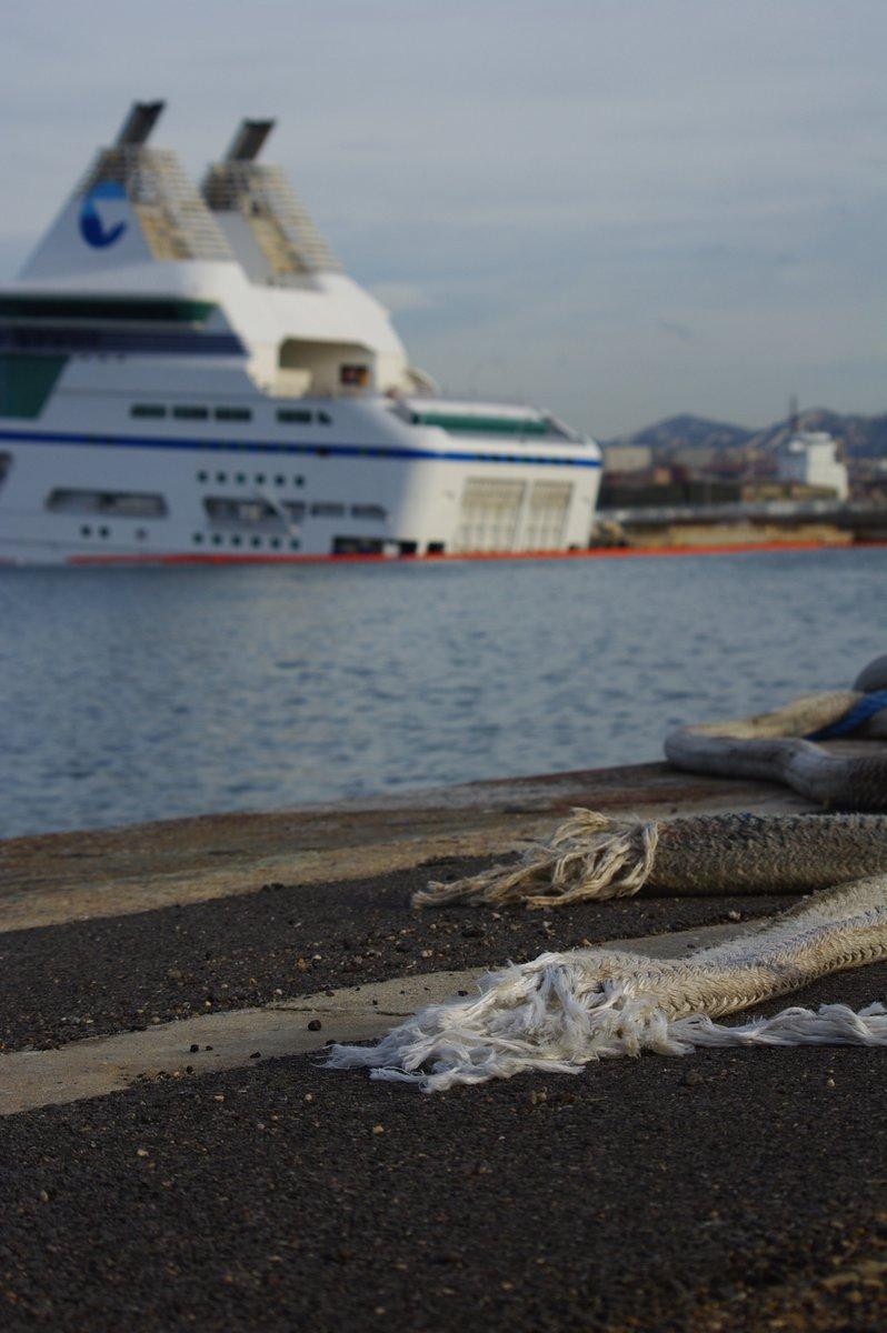 Les amarres qui ont rompu avec, en toile de fond, le navire endommagé ; Marseille, novembre 2012 ; photo : Alain Lepigeon.