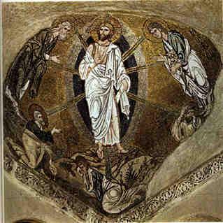 Daphni transfiguration