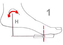 dorsiflexion-extension