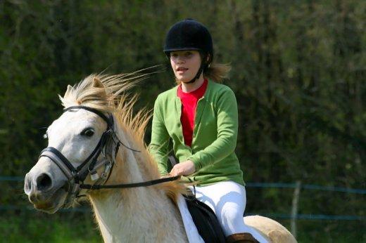 ¤ Vérification de l'équipement Equitation10